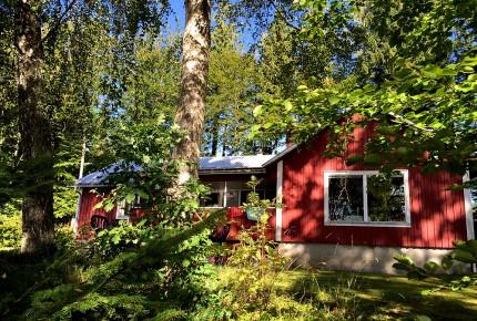 Joarsbo Ferienhaus in Mitten der Natur