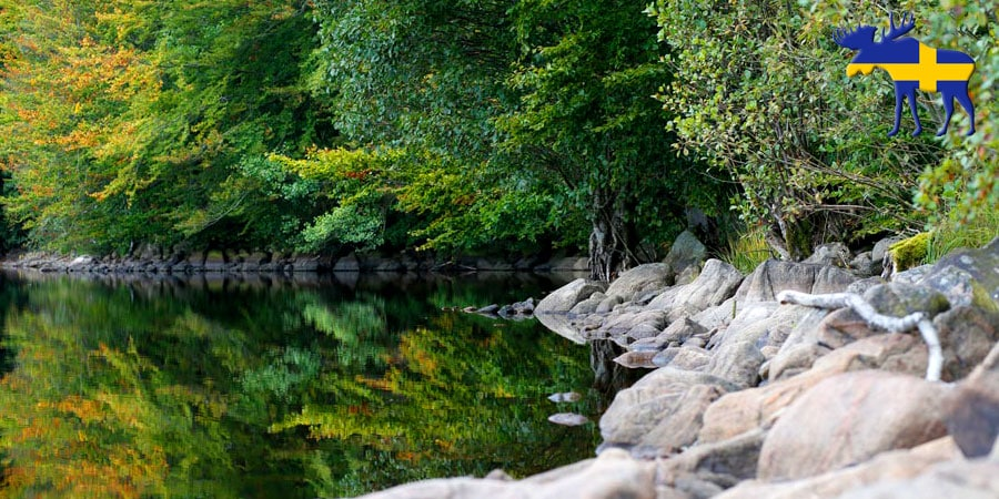 Ferienhaus Schweden im Naturreservat