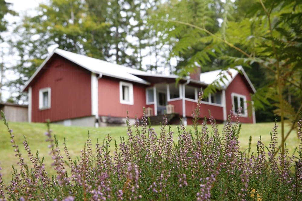 Ferienhaus in Schweden mieten mitten im Naturschutzgebiet